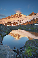 Mount Baker (elevation 10,778 feet, 3,285 m) northernmost volcano in the Cascade Range, seen from Heliotrope Ridge, Mount Baker Wilderness Washington