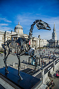 Gift Horse by Hans Haacke is unveiled by The Mayor of London, Boris Johnson, as the tenth commission for the Fourth Plinth in Trafalgar Square, 5 Mar 2015, London. The sculpture portrays a skeletal, riderless horse – a 'wry' comment on the equestrian statue of William IV originally planned for the plinth. Tied to the horse's front leg is an electronic ribbon displaying live the ticker of the London Stock Exchange, completing the link between power, money and history. The horse is derived from an engraving in the Anatomy of a Horse of 1766 by George Stubbs; the famous English painter whose works are represented in the National Gallery at Trafalgar Square. Hans Haacke is one of Germany's most important contemporary artists, known for his installations in the Reichstag in Berlin, and for taking a sledgehammer to the floor of the German Pavilion at the 1993 Venice Biennale in protest against the building's Nazi-style architecture.