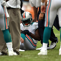 Dolphins running back Reggie Bush is injured during an NFL football game between the New York Jets and the Miami Dolphins on Sunday, September 23, 2012 at SunLife Stadium in Miami, Florida. (AP Photo/Alex Menendez)