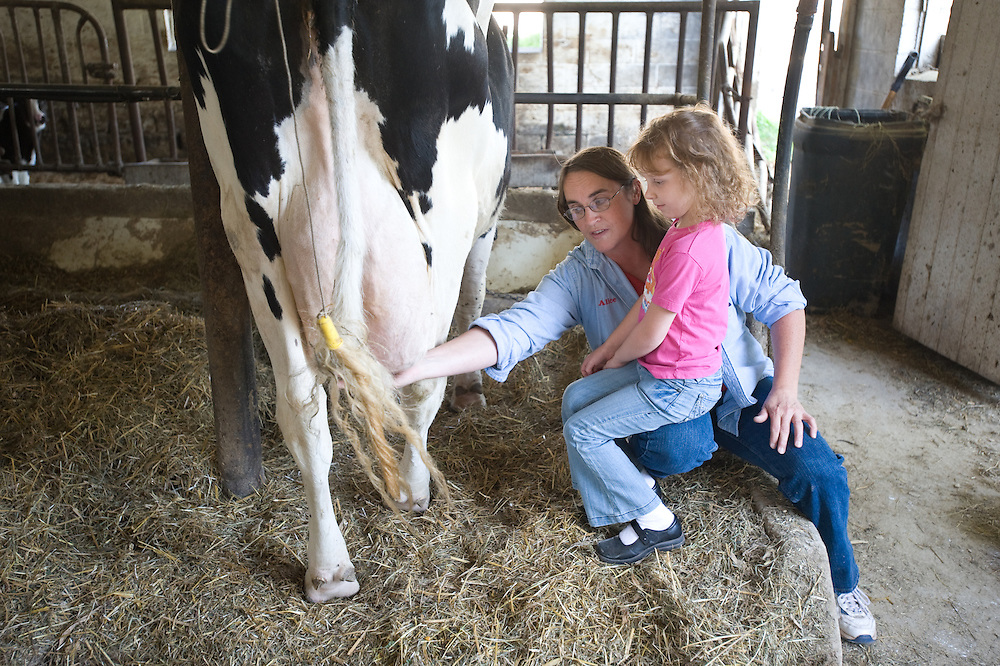 Woman teaching a little girl how to milk a cow