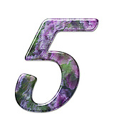 The number Five Part of a set of letters, Numbers and symbols of 3D Alphabet made with a floral image on white background