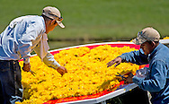 Landscape Art florist put the finishes touches on the Shell Oil Flower sign on the 18th island green at the Golf Club of Houston on Monday, March 28, 2016 in Humble, TX. The sign is made up of mums and takes about 12 hours to assemble. The Landscape Art company has been designing the Shell Oil Flower since 1993.(Photo: Thomas B. Shea/For the Chronicle)
