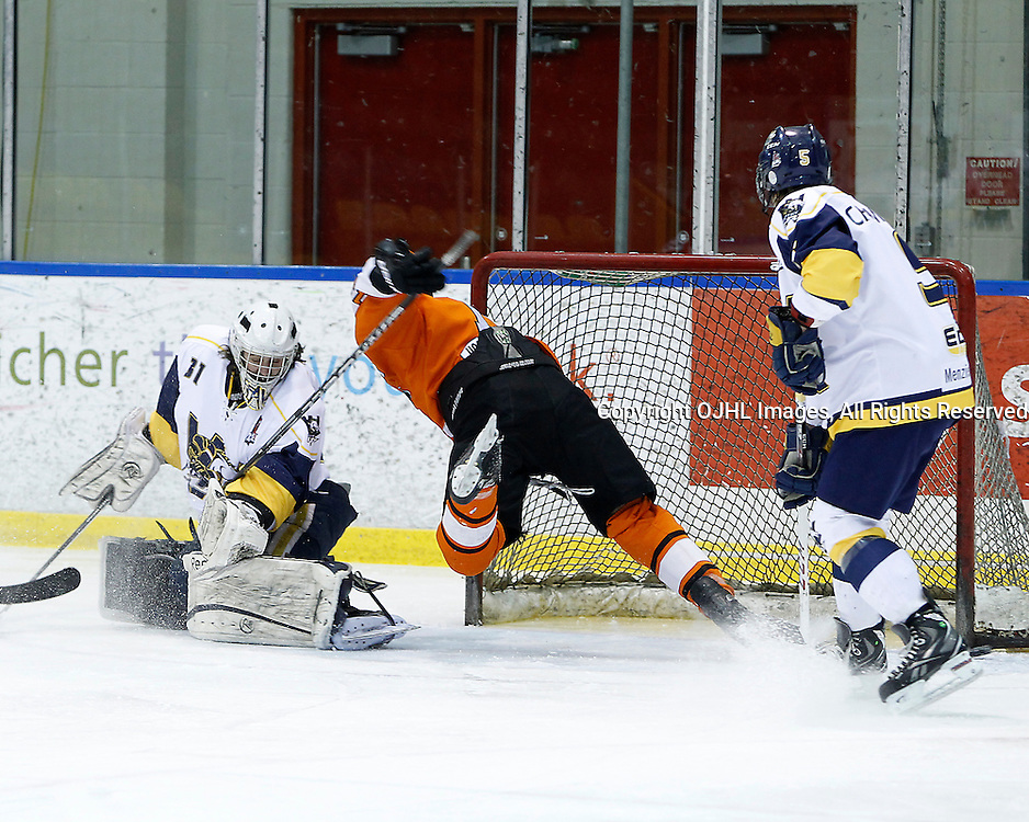 Whitby, ON - Feb 11 : Ontario Junior Hockey League game action between the Whitby Fury and the Orangeville Flyers. Whitby Fury Tyler Feaver #31 makes the save against the Orangeville Flyers during first period game action.<br /> (Photo by Tim Bates / OJHL Images)