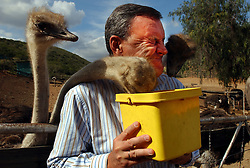 OUDTSHOORN, SOUTH AFRICA - MAY-1-2004 -.Marc Verwilghen , Belgian Minister of Development and Cooperation, visits the Ostrich Leather World store and Ostrich Farm in Oudtshoorn , South Africa . The enterprise is owned by Philippe Capelle formerly of Ardooie, Belgium in West Flanders. (PHOTO © JOCK FISTICK)...<br />