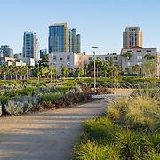 Hargreaves Associates, Schmidt Design Group, Davis Davis Architects, Waterfront Park, San Diego, California, County Administration Center, McCarthy Builder Companies
