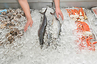 Close-up of mixed fish in ice at market