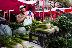 Scenes from the Medellin Market, a fruit and vegetable market that takes place once a week in Mexico City on Medellin Street.