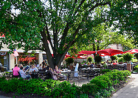 Hyde Park Square Indigo Cincinnati Ohio