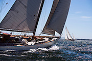 Sumurun sailing in the Museum of Yachting Classic Yacht Regatta.