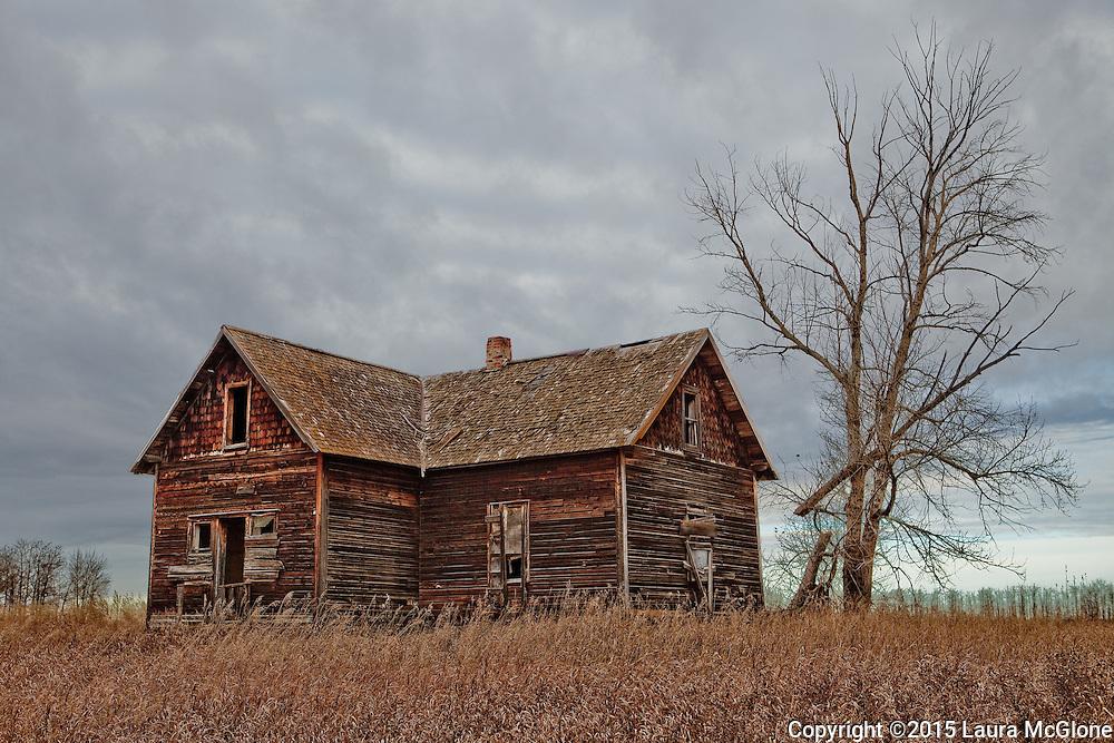 Abandoned Homestead, Alberta Prairies, Canada