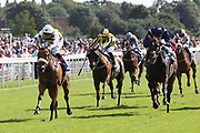 DAKOTA GOLD (1) ridden by Connor Beasley and trained by Michael Dods winning The Listed LNER Supporting CALM Garrowby Stakes over 6f (£50,000) during the Family Race Day held at York Racecourse, York, United Kingdom on 8 September 2019.