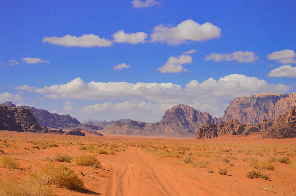 No matter where you look in the Wadi Rum desert you will always find something interesting to see.