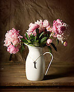 Still life pink peony in white metal vase