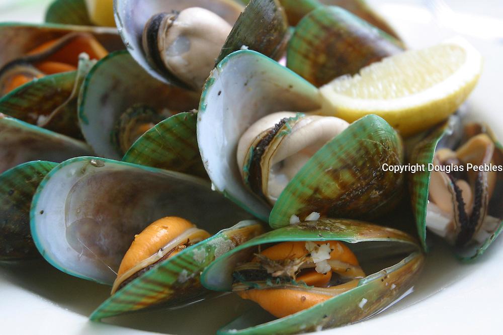 Green Lip Mussels, New Zealand<br />