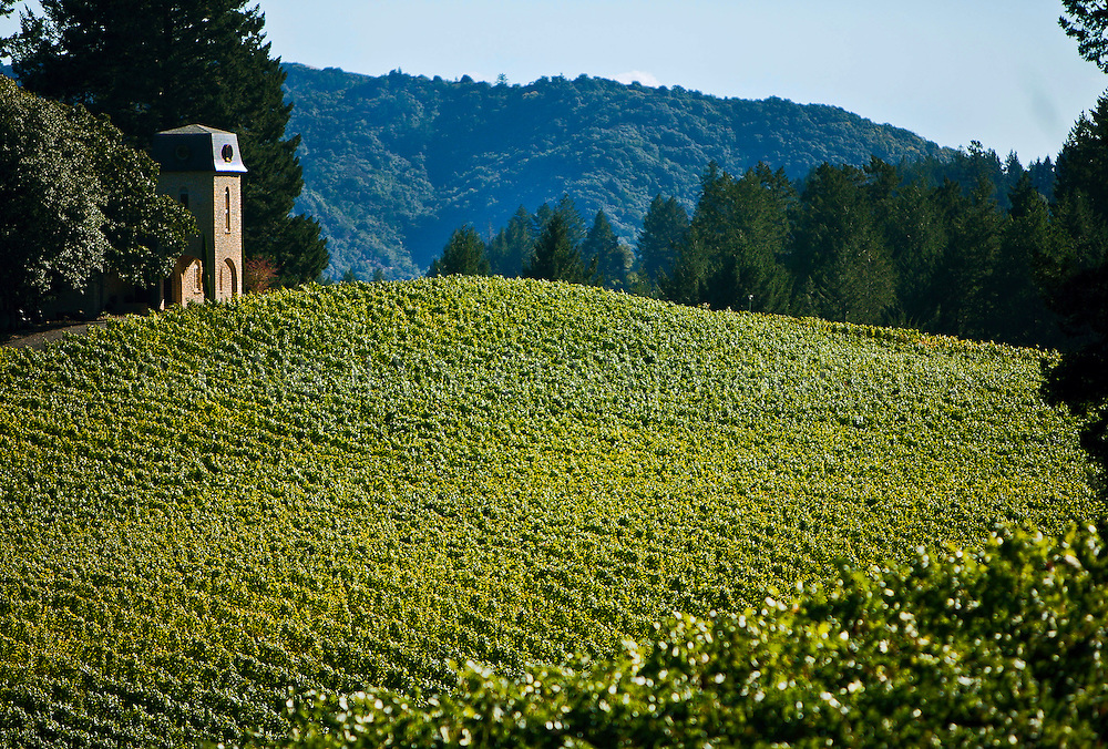 late summer view of Villa Valentine at Terra Valentine Winery from across the vineyards. Saint Helena, California