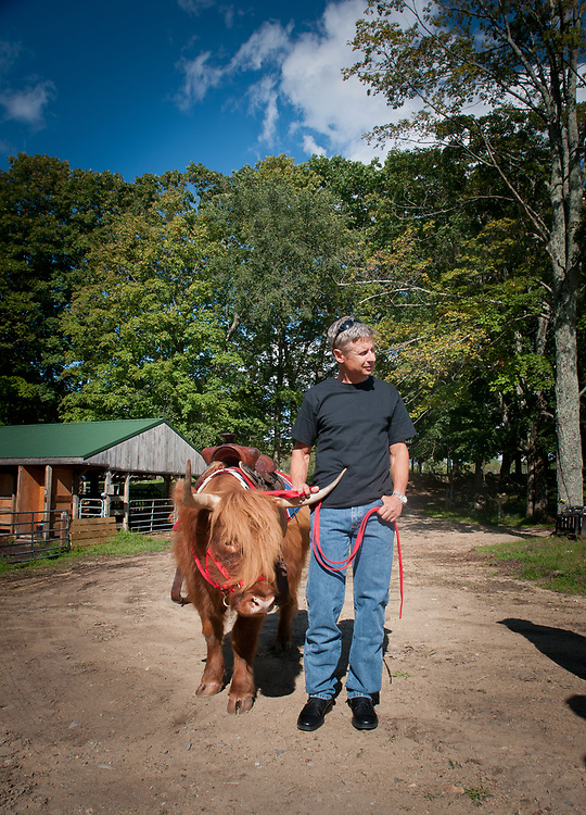 Presidential hopeful, former New Mexico Governor Gary Johnson holds onto Missy, a Scottish Highlander as he pays a visit and takes a tour of Miles Smith farm in Loudon, NH. 23rd of august 2011.