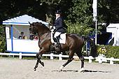 Dressuur Paarden '10