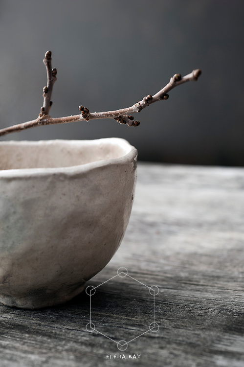 &quot;Contemplation is the koan generator...&quot;<br /> <br /> ~Elena Ray<br /> <br /> A budding twig resting on an simple bowl in a rustic setting. Still Life Photography.