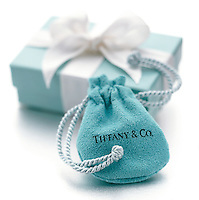 Tiffany jewelry purse and gift box on white background