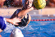 the u.s. women's water polo team in action during a pre-olympic match with russia at stanford university.
