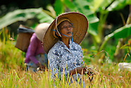 Discover the Island of Java, Indonesia