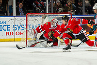 KELOWNA, BC - MARCH 02:  Shane Farkas #1 defends the net as John Ludvig #15 of the Portland Winterhawks tries to block a shot by the Kelowna Rockets at Prospera Place on March 2, 2019 in Kelowna, Canada. (Photo by Marissa Baecker/Getty Images)