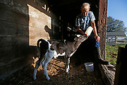 Fred Zell hand feeds Trigger at his family's century farm in Billings.