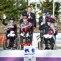 Team Competition - FEI European Para Dressage Championships 2015 - Deauville