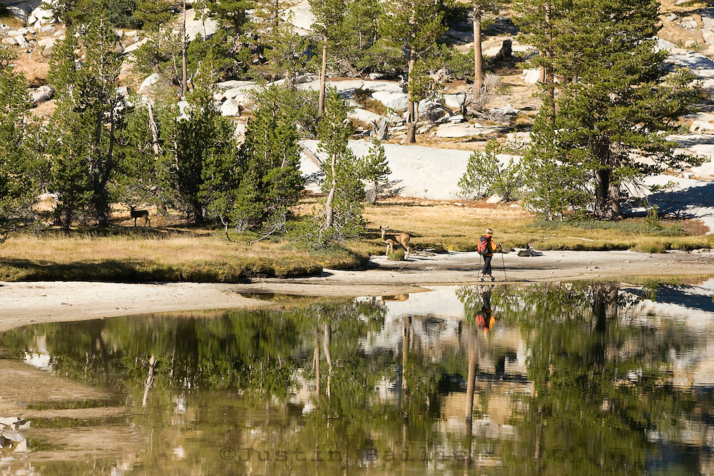 Alicia Ritter backpacking in Yosemite National Park, CA