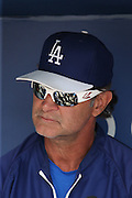 LOS ANGELES, CA - JUNE 15:  Manager Don Mattingly #8 of the Los Angeles Dodgers talks to the media in the dugout before the game against the Arizona Diamondbacks at Dodger Stadium on Sunday, June 15, 2014 in Los Angeles, California. The Diamondbacks won the game 6-3. (Photo by Paul Spinelli/MLB Photos via Getty Images) *** Local Caption *** Don Mattingly