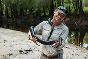 Eastern Indigo Snake (Drymarchon couperi) & Heidi Hall<br /> CAPTIVE<br /> The Orianne Indigo Snake Preserve<br /> Telfair County, Georgia<br /> USA<br /> HABITAT & RANGE: Long leaf pine sandhills of central plains of Georgia, southern South Carolina south through Florida and west to Louisiana, Mississippi, and Alabama that are populated with Gopher Tortoises.<br /> Federally listed as THREATENED SPECIES