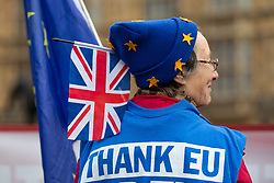 © Licensed to London News Pictures. 11/01/2019. London, UK.  A 'Remain' supporter wears a hat representing the EU flag with a Union Jack flag on the side whilst demonstrating opposite the Houses of Parliament in Westminster. Photo credit: Vickie Flores/LNP