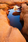 A waterpocket deep inside the Black Hole of White Canyon. White Canyon, Utah.
