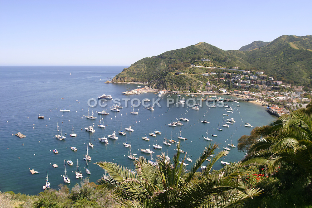 View of Avalon Bay Catalina Island