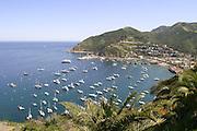View of Avalon Bay Catalina Island