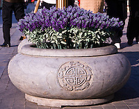 Flower pots.  The ancient Qianmen street in Beijing has undergone significant renovation in recent years.  It is now one of the city's key tourist attractions.
