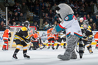 KELOWNA, CANADA - DECEMBER 4: Initiation teams from Kelowna Minor Hockey play a mini-minor game during intermission at the Kelowna Rockets against the Medicine Hat Tigers on December 4, 2015 at Prospera Place in Kelowna, British Columbia, Canada.  (Photo by Marissa Baecker/Shoot the Breeze)  *** Local Caption *** KMHA; minor hockey; mini minor;