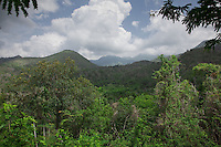Taking a hike in the Escambray Mountains near Trinidad is a wonderful way to spend a day.