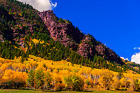 Fall foliage, Rocky Mountains, Redstone, Colorado USA.