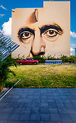 Huge face painted on the four-story Wynwood Lofts building in Miami's Wynwood arts district