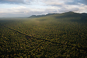 Kanuku Mountains & rainforest & road<br />