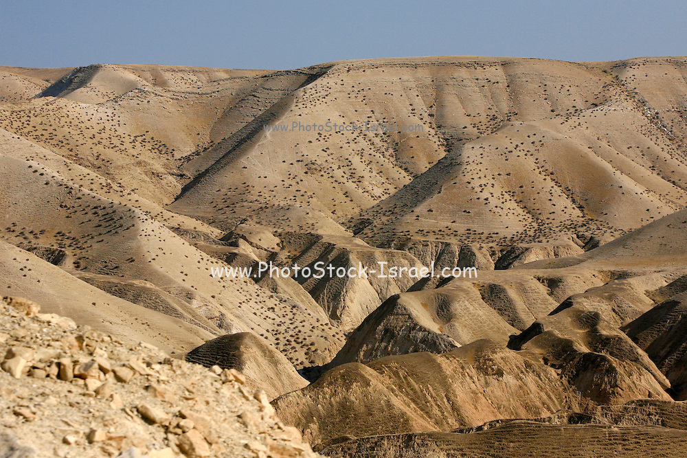 Israel, West Bank, Judaea Desert, The dunes of Judea desert.