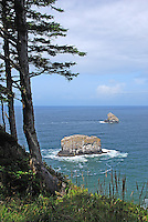 Pacific Ocean coastline at Cape Meares, Oregon, USA, 200808310725.<br />
