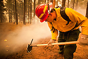 02 JUNE 2011 - ALPINE, AZ: Tim Rogers from the US Forest Service attacks a spot fire in the Chapache subdivision at the Wallow Fire near Alpine. High winds and temperatures complicated firefighters' efforts to get the blaze under control. Officials have issued a mandatory evacuation order and residents of the Alpine area had to leave by 8PM Thursday.   PHOTO BY JACK KURTZ