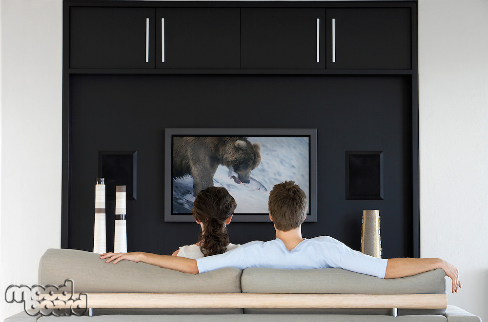 Back view of couple watching wildlife movie on television in living room