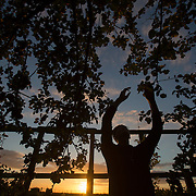 Hermit Sister Rachel Denton picks apples in the evening at St Cuthberts' Hermitage in Lincolnshire, north east Britain September 25, 2015. Sister Rachel Denton has vowed to spend the rest of her life living as a consecrated hermit in the Catholic faith. A hermit is a person who chooses to live alone, with the intention of finding God. Rarely leaving her house she lives a life of prayer and solitude. However, she uses the internet and social media to share her experience and distance her self from physically interacting with society. REUTERS/Neil Hall