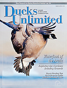 Ducks Unlimited, Mar-Apr 2010