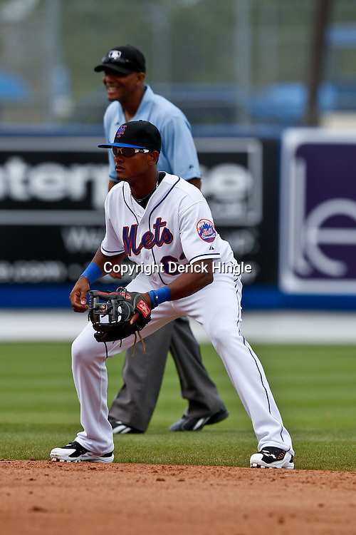 March 6, 2011; Port St. Lucie, FL, USA; New York Mets second baseman Jordany Valdespin (63) during a spring training exhibition game against the Boston Red Sox at Digital Domain Park. The Mets defeated the Red Sox 6-5.  Mandatory Credit: Derick E. Hingle