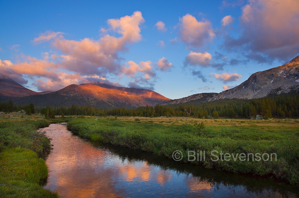 A photo of Mount Dana and a creek in Tuolumne Meadows in Yosemite at sunset.