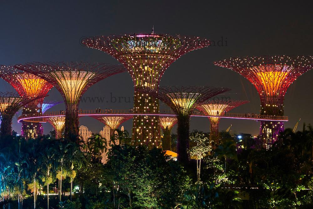 Singapour, Marina Bay, Garden By The Bay, le jardin botanique du Singapour 'vert', Supertree Grove // Singapore, Marina Bay, Garden By the bay, botanic garden, Supertree Grove